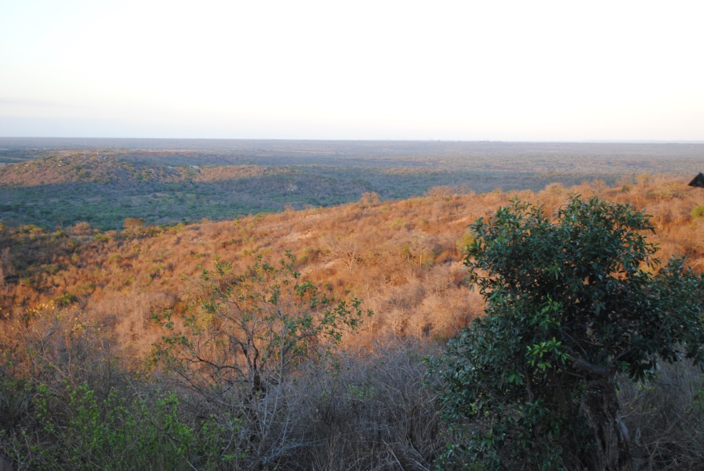 view-from-Zulu-Nyala