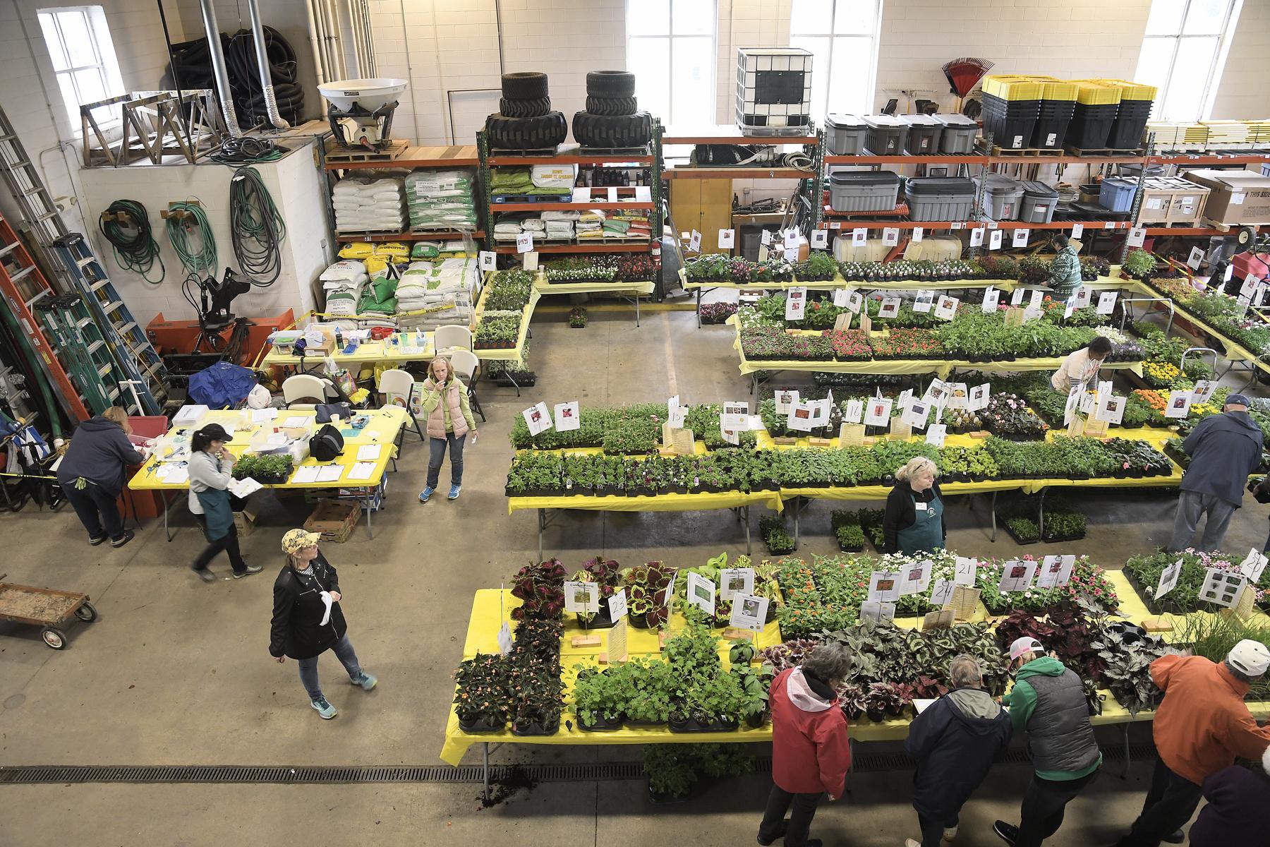 Plant-Sale_004