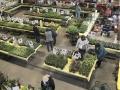 Plant-Sale_008