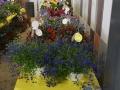Plant-Sale_028